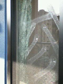 窓拭きでも遊んでるし。